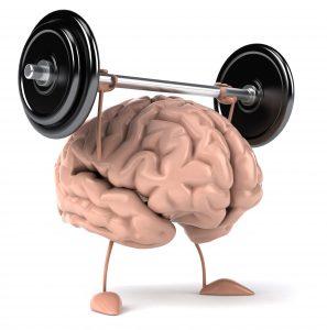 En hjärna